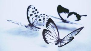 papillon maman parfaite